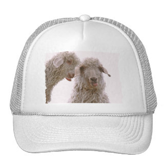 Two Silly Goats Mesh Hat
