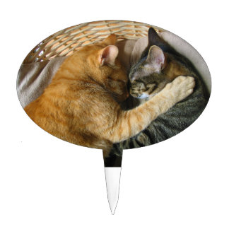 Two Sleeping Tabby Cats Cuddling Cake Topper