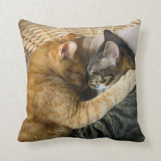 Two Sleeping Tabby Cats Cuddling Pillow