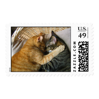 Two Sleeping Tabby Cats Cuddling Postage Stamp