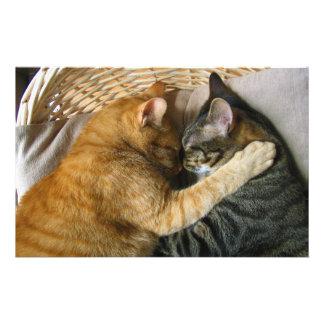 Two Sleeping Tabby Cats Cuddling Stationery