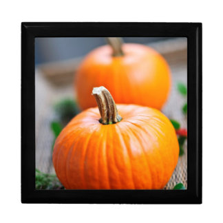 Two small pumpkins keepsake box