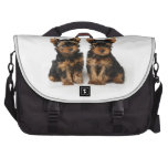 Two small yorkies laptop bags