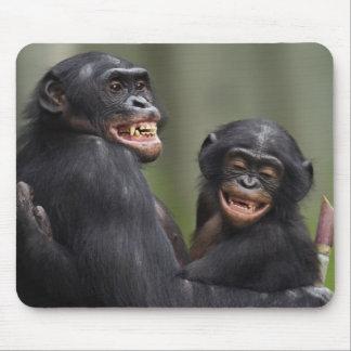 Two smiling Bonobos Mouse Pad
