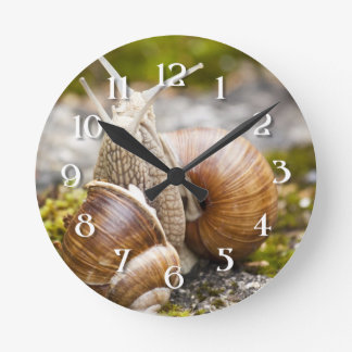Two Snails Round Clock
