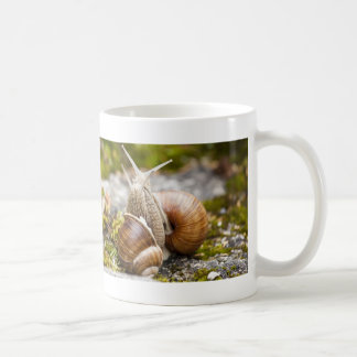 Two Snails Coffee Mug