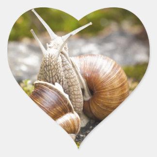 Two Snails Heart Sticker