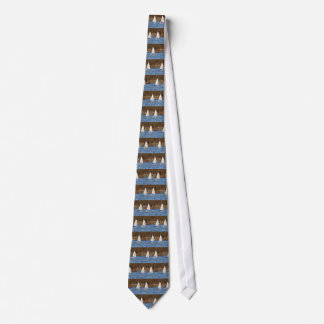 Two Solo Sailing Dinghies Tie