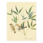 Two Sparrows Postcard
