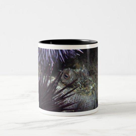 Two-spot Octopus Two-Tone Coffee Mug