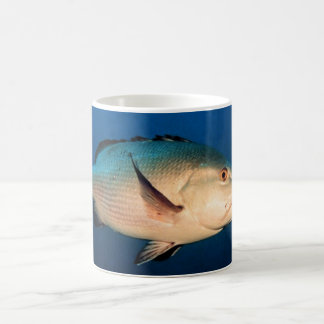 Two Spot Red Snapper Coffee Mug