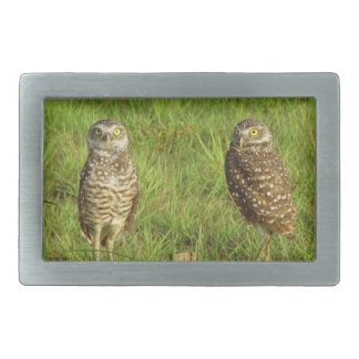 Two spotted owls Belt Buckle