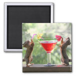 Two Squirrels Drinking a Cocktail Magnets