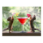 Two Squirrels Drinking a Cocktail Post Card