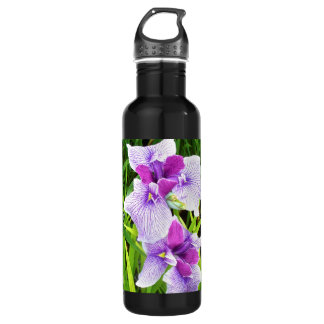 Two Stainless Steel Water Bottle