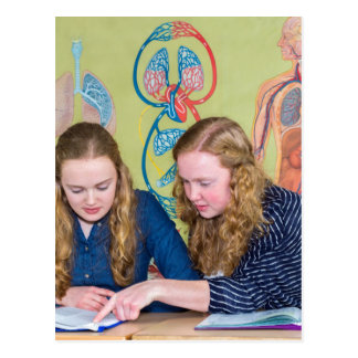 Two students learning with books in biology lesson postcard