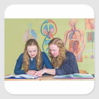 Two students learning with books in biology lesson square sticker