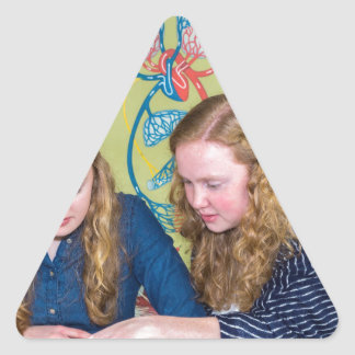 Two students learning with books in biology lesson triangle sticker