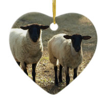 Two Suffolk Sheep Sunlight Pasture Ornament