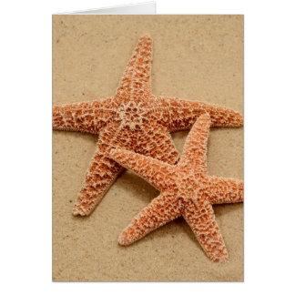 Two Sugar Starfish Card