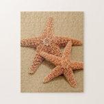 Two Sugar Starfish Jigsaw Puzzle