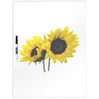 Two Sunflowers Dry Erase Board
