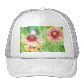 Two Sunny Blanket Flowers Hats