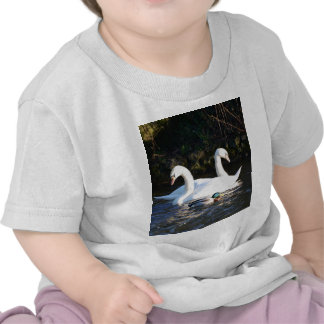 Two Swans And A Duck T Shirt