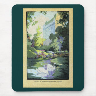 Two Swans in Central Park Lake Mouse Pad
