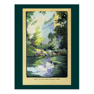 Two Swans in Central Park Lake Postcards
