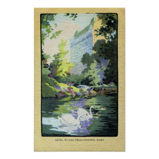 Two Swans in Central Park Lake Poster
