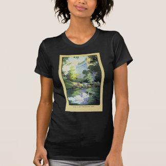 Two Swans in Central Park Lake Tee Shirts