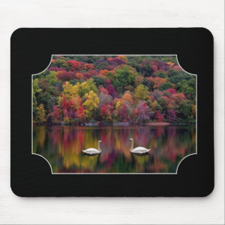 Two Swans Mouse Mat