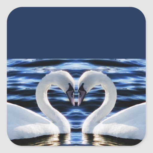 Two swans stickers