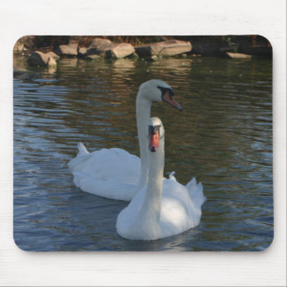 Two Swans swimming in a lake bulk discount Mouse Pad