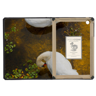 Two swans with sun reflection on shallow water. iPad mini cases