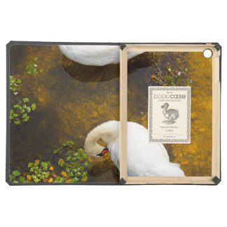 Two swans with sun reflection on shallow water. case for iPad air