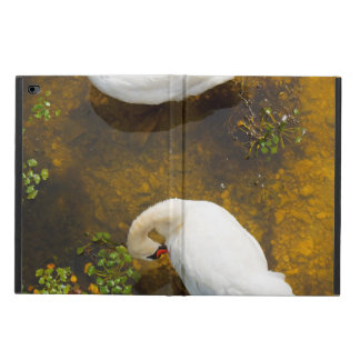 Two swans with sun reflection on shallow water. powis iPad air 2 case