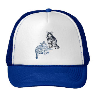 Two Tabby Cats Hat