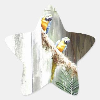 Two Talking Parrots Star Sticker