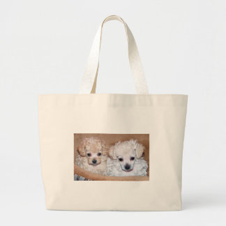 Two Tan Toy Poodle puppies brother and sister Large Tote Bag