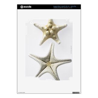 Two Thorny Starfish Decal For iPad 3