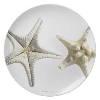 Two Thorny Starfish Dinner Plate