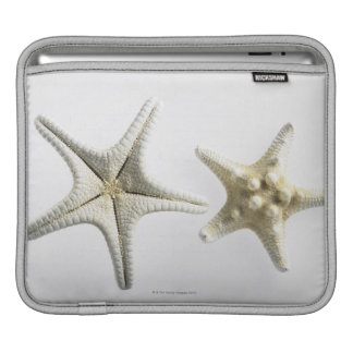 Two Thorny Starfish iPad Sleeve