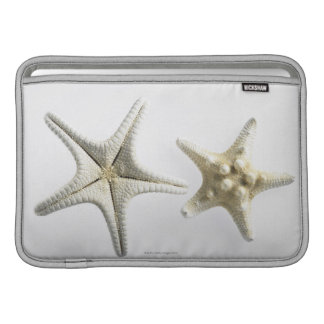 Two Thorny Starfish MacBook Sleeve