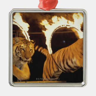 Two tigers leaping through burning rings of fire metal ornament