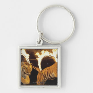 Two tigers leaping through burning rings of fire Silver-Colored square keychain