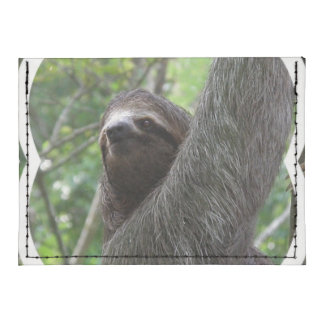 Two Toed Sloth Card Wallet