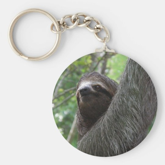 Two Toed Sloth Keychain