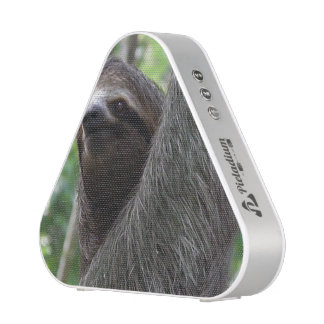 Two Toed Sloth Bluetooth Speaker